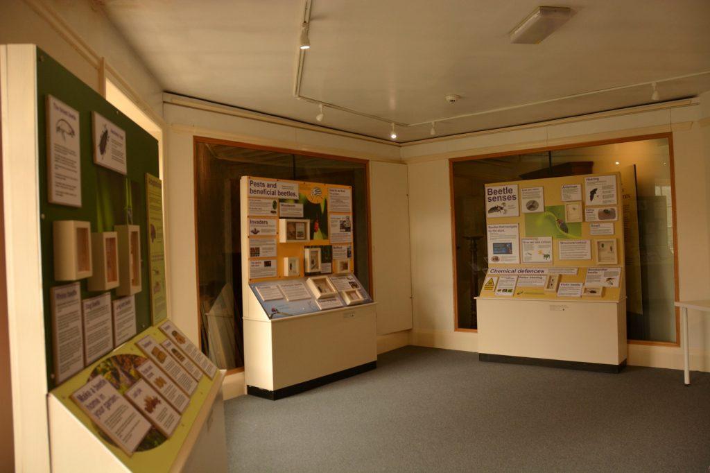Northampton natural history exhibit