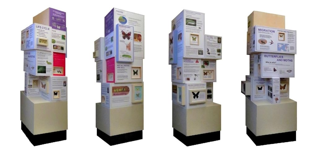 Butterfly tower, Northampton museum